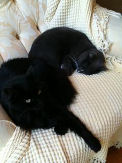 rare sleep together